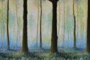 reprodukcija Forest