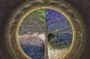 [R] Cycle: Trees of the Paradise Kingdom - Light-dark tree